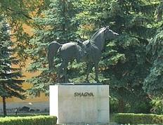 Shagya (ló) szobor